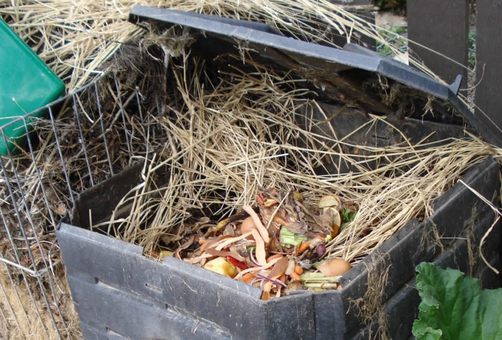 An open compost bin with food scraps and strands of wheat in it.