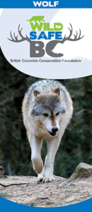 Cover+Image+Wolf.fw