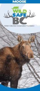 moose 02 25 2016