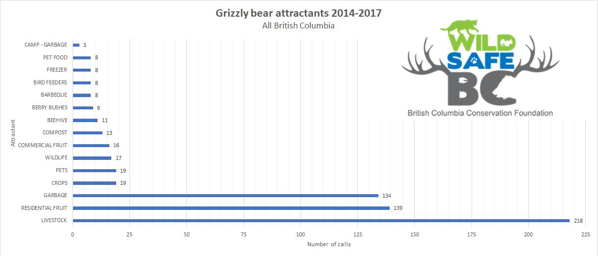 grizzlybeargraph2