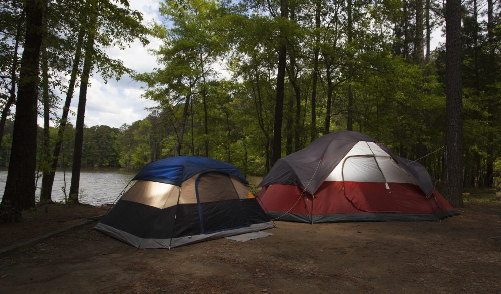 Two nylon tents in a campsite next to a lake surrounded by forest