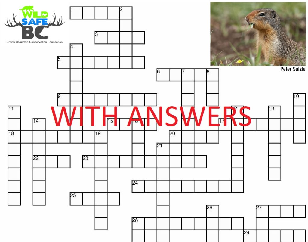 crosswordwithanswers