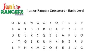 JRP_Crossword_Basic