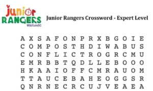 JRP_Crossword_Expert