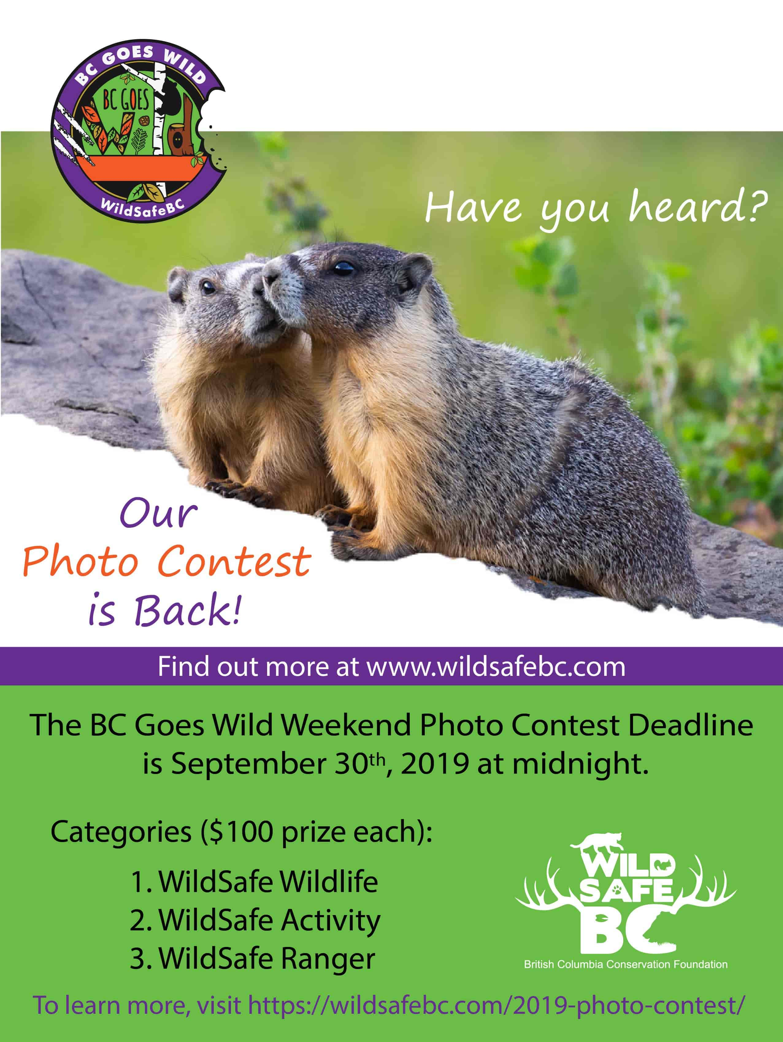 BCGW Photo Contest 2019_with photo contest address-min