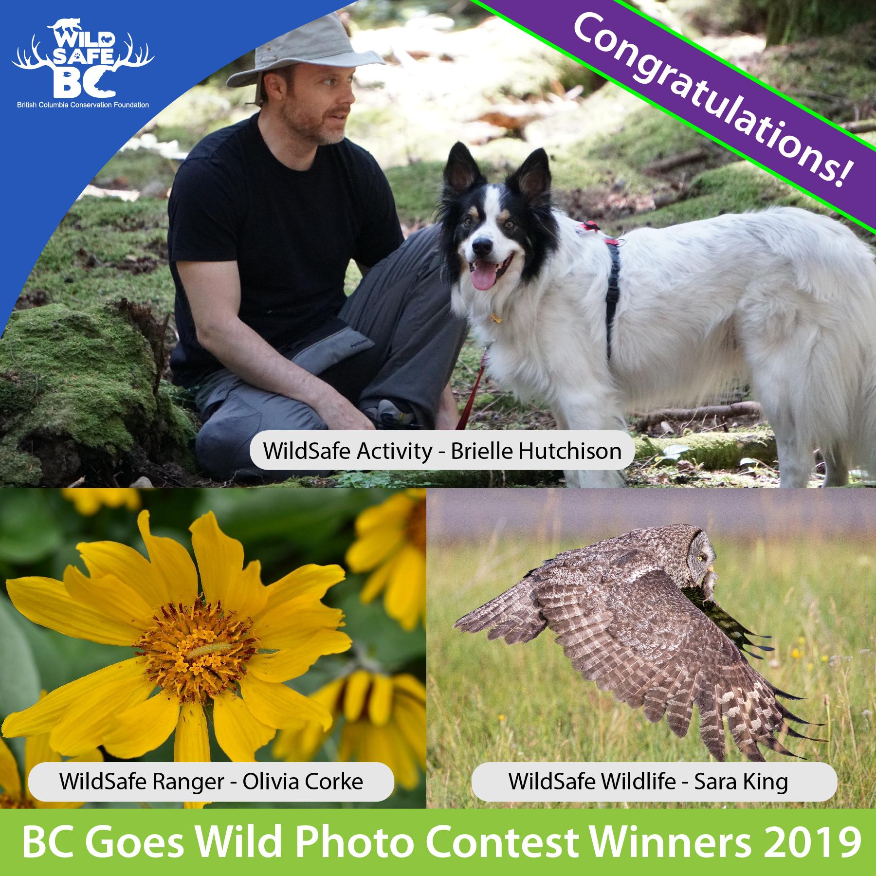 BC Goes Wild Winners 2019-01
