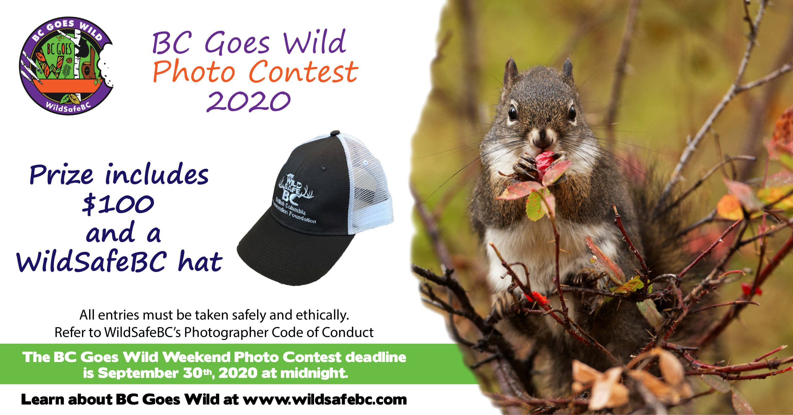 BCGW Photo Contest FB banner_2020-01