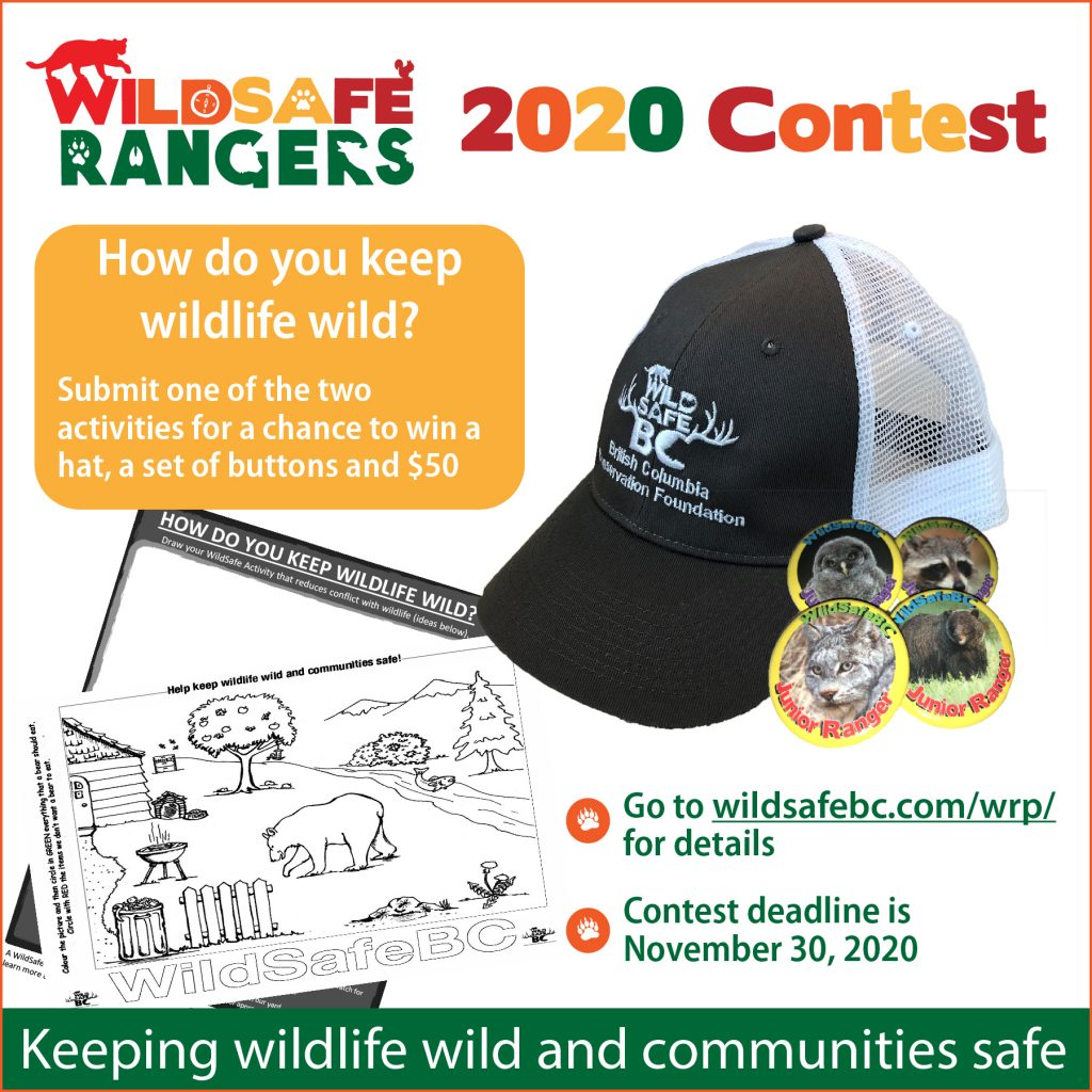 WRP Contest 2020-01