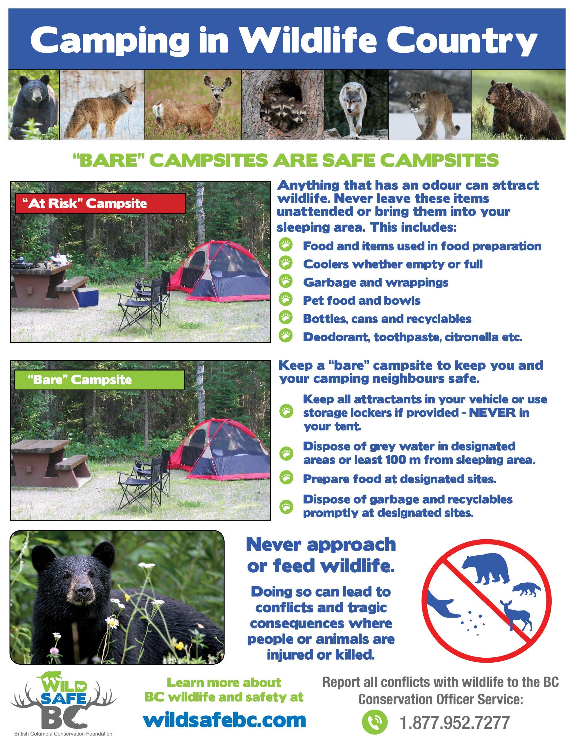 WSBC Bare Camping Poster 2020_8.5x11