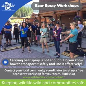 Bear Spray Wokshops-01