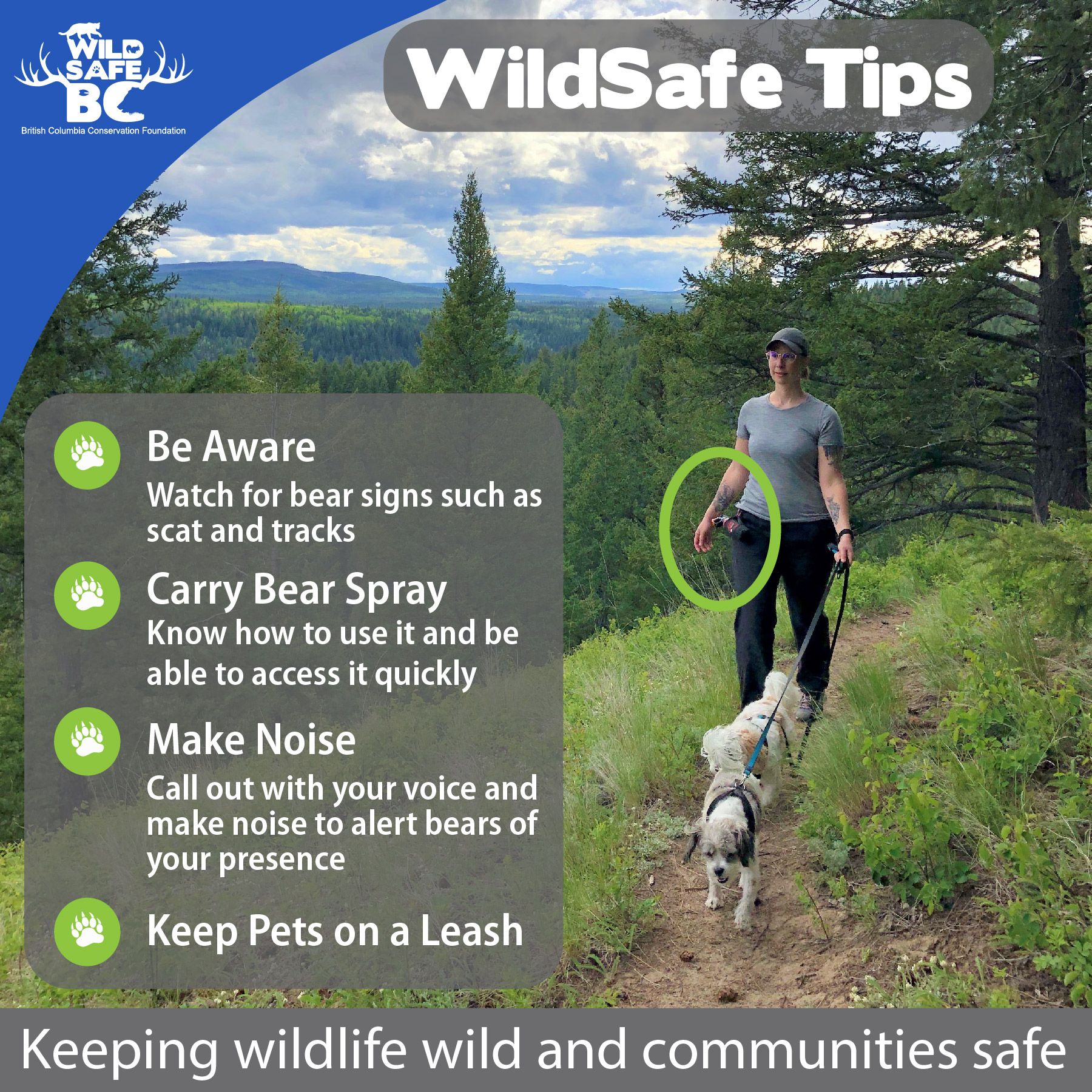 WildSafe Tip Hiking with Dogs