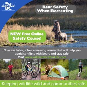Bear Safety Course promo-01
