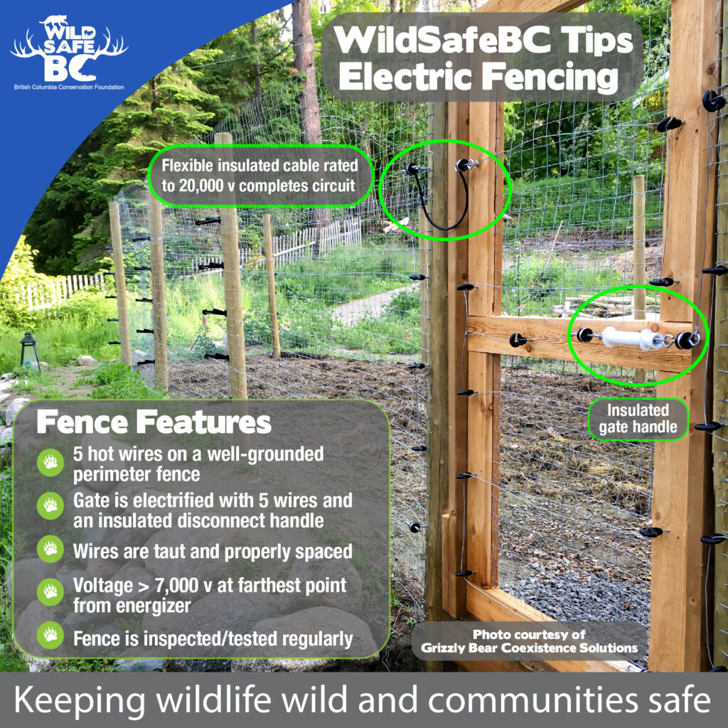 WildSafe Electric Fencing 5wire hot fence on perimeter fence with gate-01